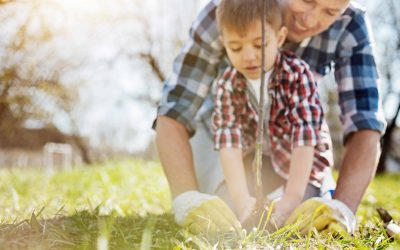 The Link Between Gardening and Fitness