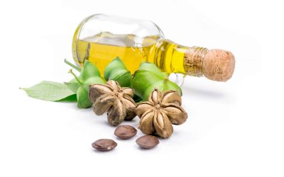 Benefits of Sachi Inchi for Healthy Hair and Scalp