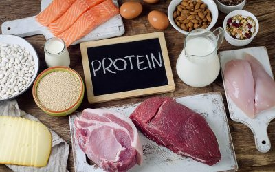 Why Is Protein Important in Our Diets?